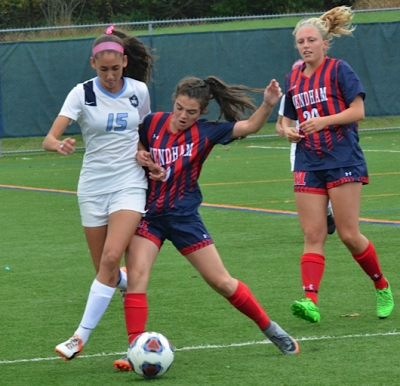 Lutz powers Mendham into title game
